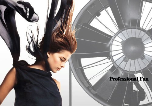 SF-01 (SF 01) PROFESSIONAL STUDIO FAN / STREAM WIND / BLOW HAIR MACHINE